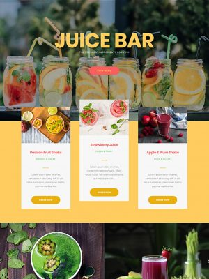 Screen shot of website design for a juice bar